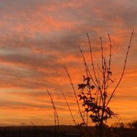 Fabuleux couchers de soleil en novembre